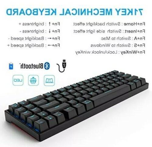 RK71 Keys Blue Backlit Compact Gaming